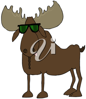 Royalty Free Clipart Image of a Moose Wearing Sunglasses