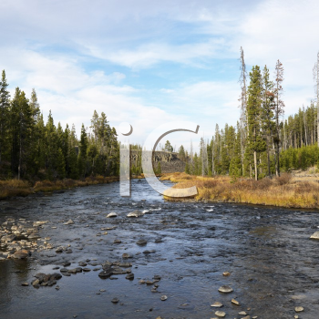 Royalty Free Photo of a Landscape With Shallow Stream in Yellowstone National Park, Wyoming
