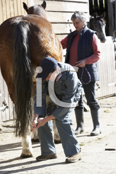 Royalty Free Photo of a Vet With a Horse Owner