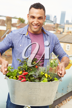 Man Holding Container Of Plants On Rooftop Garden