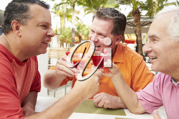 Senior Male Friends Enjoying Cocktails In Bar Together