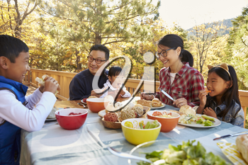 Asian family eating outside at a table on a deck in a forest