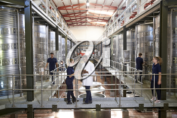Two staff talking on gangway in a modern winemaking factory