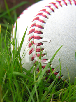 Baseball in grass