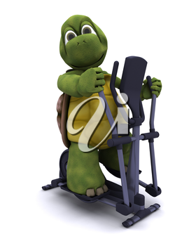 3D Render of a Tortoise with a cross trainer