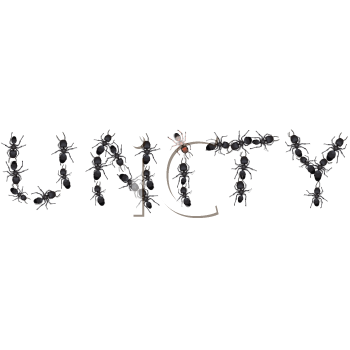 Royalty Free Clipart Image of Ants Spelling the Word Unite