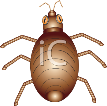 Royalty Free Clipart Image of a Beetle
