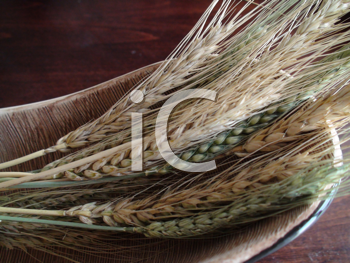 Royalty Free Photo of Wheat