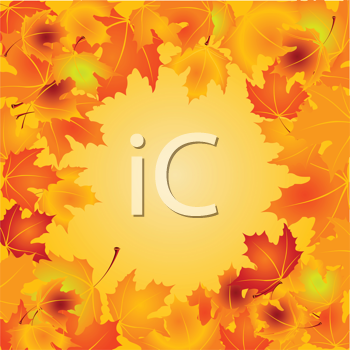 Royalty Free Clipart Image of an Autumn Leaves Background