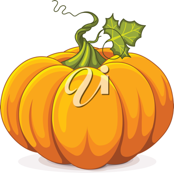 Illustration of Autumn Pumpkin