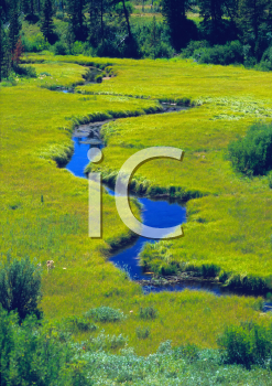 Royalty Free Photo of a Meandering Stream Through a Meadow in Grand Teton National Park