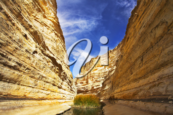 Royalty Free Photo of the Gorge Ein-Avdat During a Drought