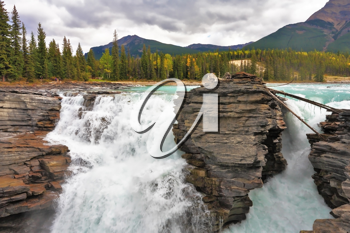 Howling Athabasca Falls in the Rocky Mountains of Canada. Between the cliffs above the water stuck logs. Cloudy day in Jasper National Park