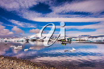 The concept of northern extreme tourism. The ice floes and cirrocumulus clouds of lagoon Jokulsarlon, Iceland. Cirrocumulus magically reflected in the smooth water of the lagoon