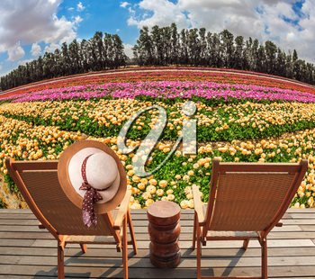 Concept of ecological tourism. Straw women's hat on a back a sun lounger. Wooden chaise lounges in the meadow with flowers. Concept of ecological tourism. Rural rest