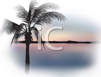 Royalty Free Clipart Image of Tropical Sunset