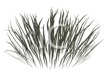 Royalty Free Clipart Image of a Dead Grass