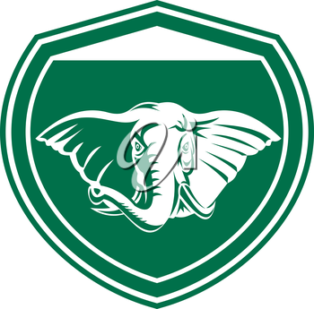 Illustration of an elephant head with tusk viewed from front set inside shield crest on isolated background done in retro style.