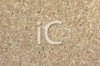 Royalty Free Photo of a Compressed Sawdust Texture