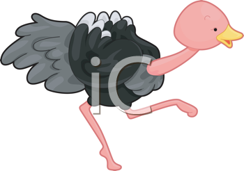 Royalty Free Clipart Image of a Running Ostrich