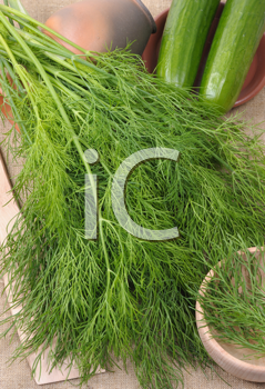 Royalty Free Photo of Dill and Cucumber on a Napkin