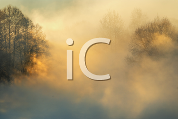 Royalty Free Photo of a Frosty Foggy Morning in Winter