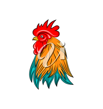 Illustration Head of Rooster, Hand Drawn Style, Colorful Cock - Vector