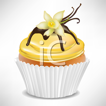 vanilla cup cake isolated