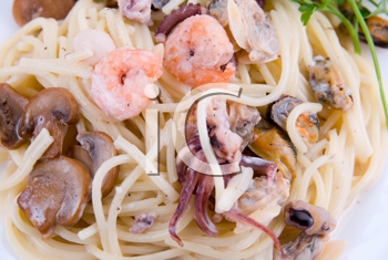 Royalty Free Photo of a Seafood Pasta Dish