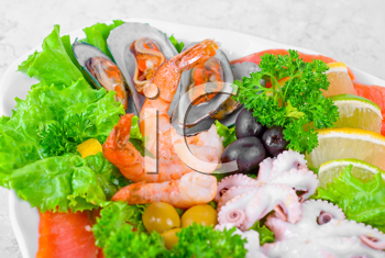 Royalty Free Photo of a Seafood Appetizer