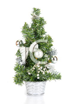 Christmas firtree isolated on a white background