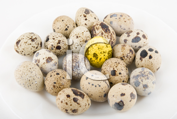 Royalty Free Photo of Quail Eggs