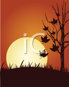 Abstract vector illustration of autumn background