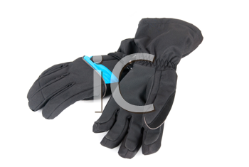 Ski gloves isolated on a white background