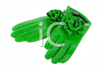 green modern female leather rose gloves isolated on a white