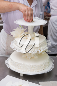 Tasty beauty wedding cake with flowers