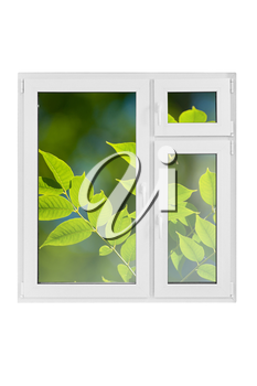 Plastic window with green leaves on white background