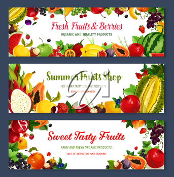 Fresh fruits and berries banners for fruit shop. Vector farm harvest of watermelon, strawberry and peach, tropical pineapple and cherry or black currant, exotic kiwi, apricot or apple and blueberry