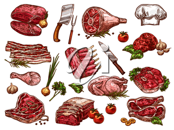 Fresh meat sketch icons for butcher shop or farm market. Vector isolated butchery beefsteak loin, pork tenderloin filet, veal brisket schnitzel, turkey and chicken, mutton ribs and beef hind quarter