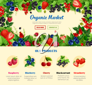 Fruit and wild berry, organic food banner template. Strawberry, cherry, blueberry, raspberry, black and red currant, gooseberry, forest briar arranged into frame and menu button for web banner design