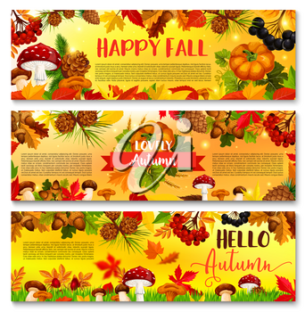 Hello Autumn or Happy Fall banners of pumpkin, forest mushroom nature harvest and maple leaf with rowan berry and falling leaves, acorns and oak orange foliage. Vector autumn season design set