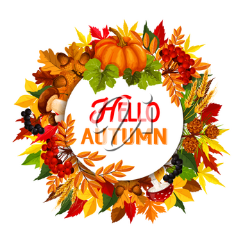 Hello Autumn poster of fall foliage, maple leaf or oak acorn and pumpkin with rowan berry and mushroom harvest. Vector falling chestnut, aspen or birch leaves design for autumn seasonal greeting card