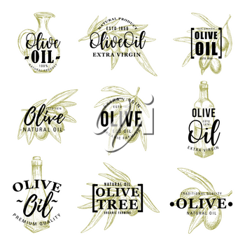 Olive oil icons of green and black olives, extra virgin products in bottles and jugs. Vector organic cooking dressing ingredient of Italian cuisine, leaf and branches silhouettes, signs and lettering