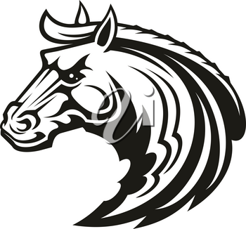 Horse animal icon of tribal tattoo or racing sport mascot. Head of black stallion, wild mustang or racehorse symbol of aggressive horse for breeding farm, riding club emblem or equestrian theme design