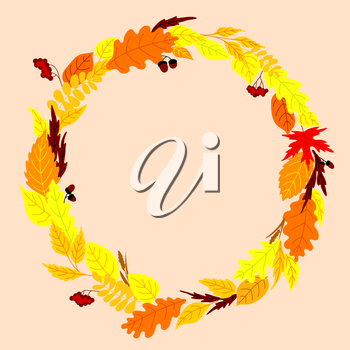 Autumn frame design with colorful fallen leaves arranged in a round wreath with viburnum bunches, acorns and herb spikelets on background with center copyspace