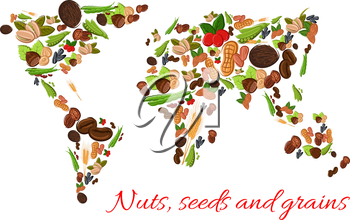 World map poster of vector nuts, grains, seeds. Vector nut, grain, kernels, natural nutritious coconut, almond, pistachio, cashew, hazelnut, walnut, bean pod, peanut, sunflower, wheat ears, pumpkin se