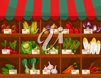 Vegetable and fruit market stall with price labels. Farm market stand with tomato, carrot, pepper, onion, chili, radish, corn, cabbage, garlic, cucumber, avocado, leek, chicory, bok choy and radicchio