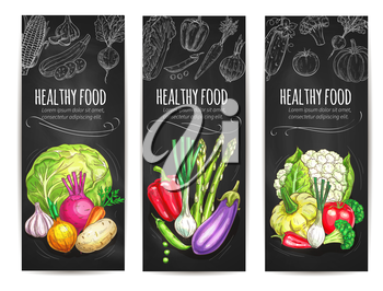 Vegetables sketch banners of vegetarian healthy veggies food cauliflower cabbage, garlic and potato, beet and onion leek, eggplant and asparagus, bell pepper, patisony squash, tomato and broccoli. Vec