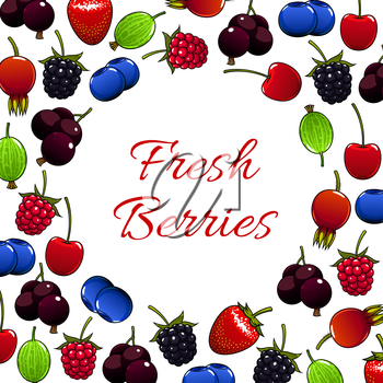 Berries vector poster of fresh juicy and sweet strawberry, raspberry, blackberry, cherry, briar, blueberry, gooseberry, blackcurrant or redcurrant. Fruity berry forest and garden harvest design for ja