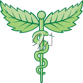 Royalty Free Clipart Image of a Snake Caduceus With Mint Leaves